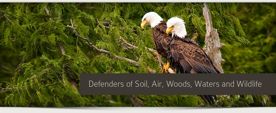 Protectors of Soil, Air, Woods, Waters and Wildlife